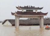 小艇载着挖掘机,24小时不间断作业……中洲圩决口封堵进行中