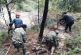 男子驾驶挖掘机推树 无意砸死老板获刑8个月!